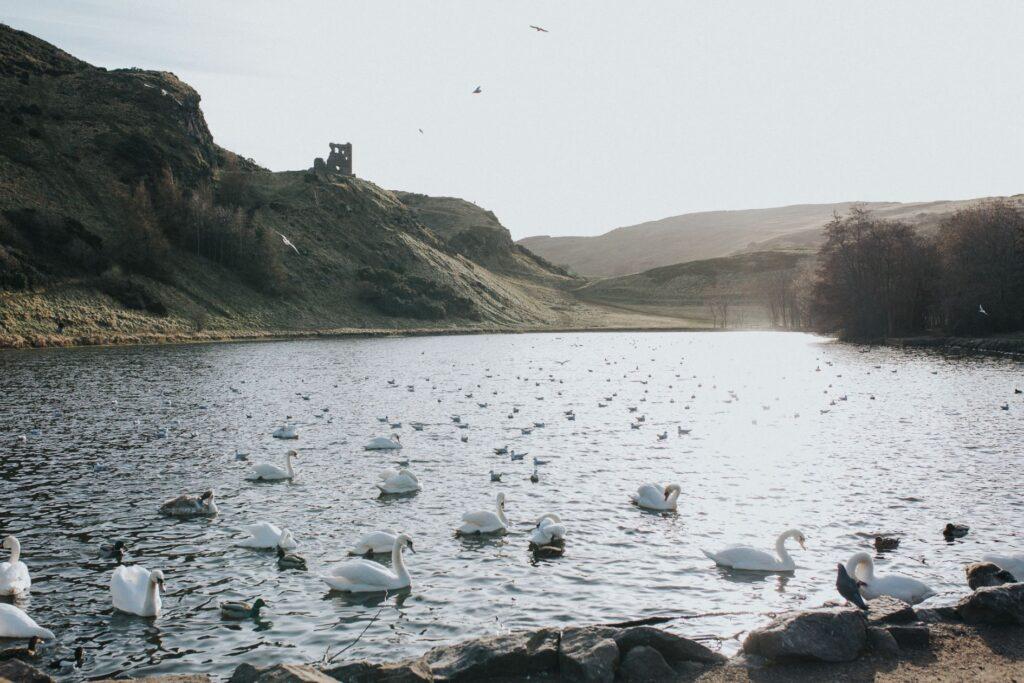 Scottish Photo Session, Stephanie and Brant – Scottish Photo Session